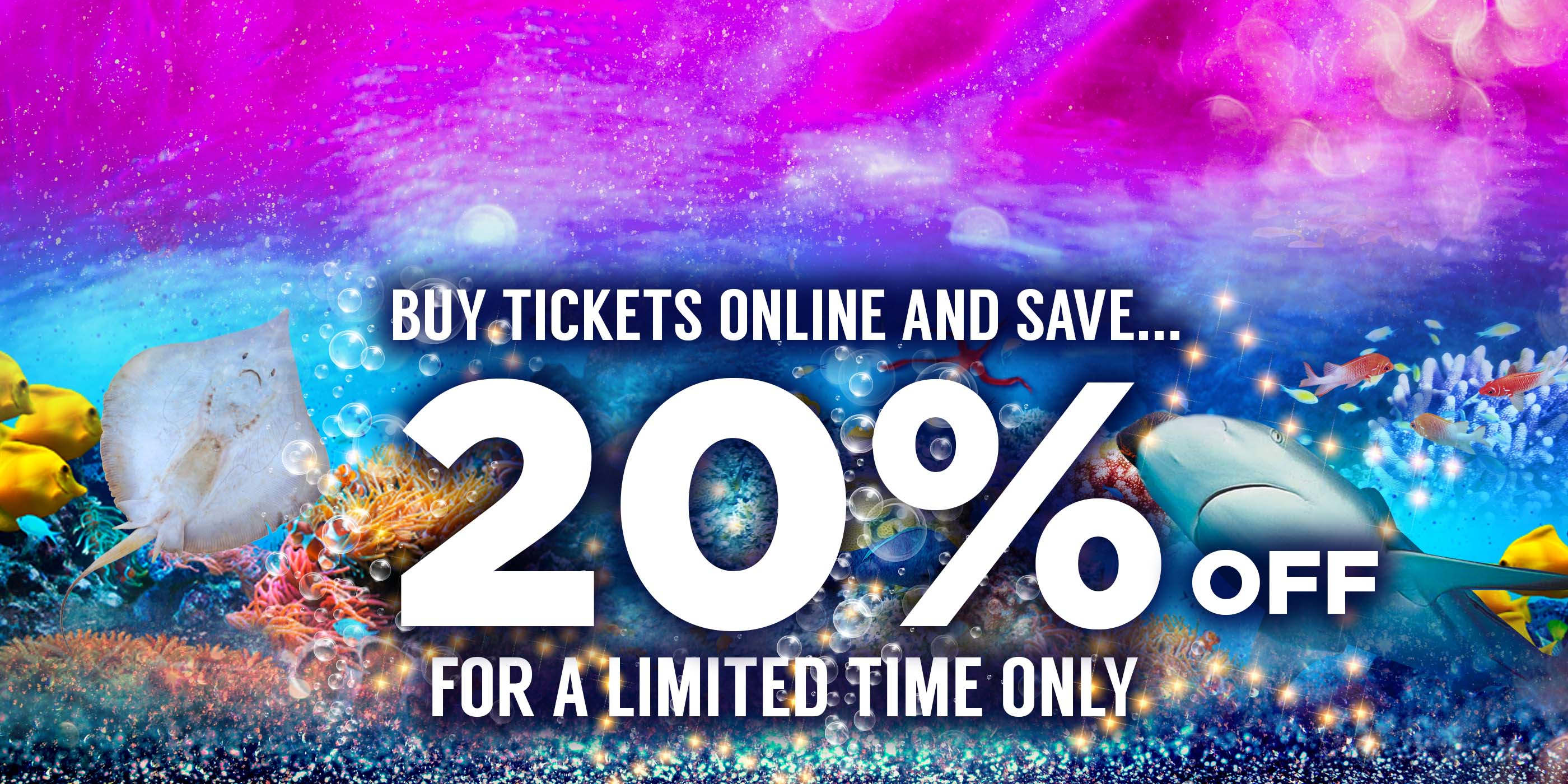 Blue reef aquarium portsmouth buy discounted tickets online for Discount aquarium fish and reef