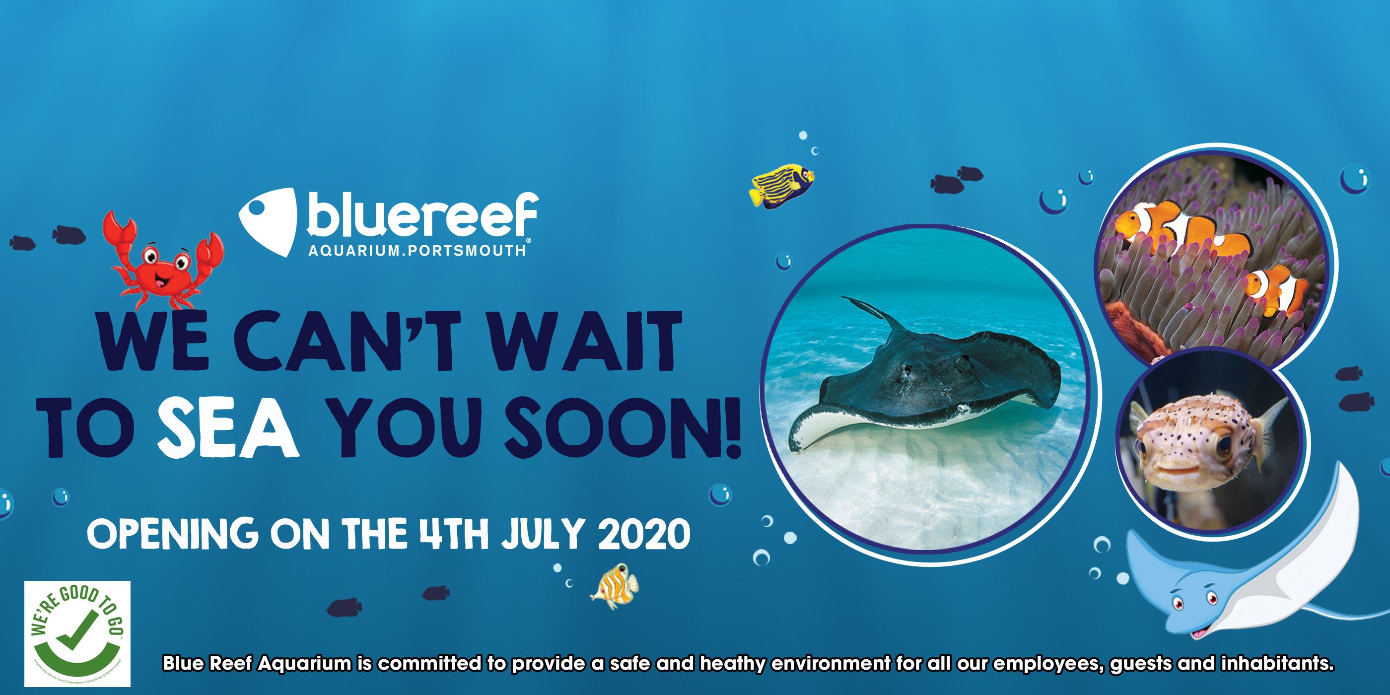 Blue Reef Aquarium Portsmouth